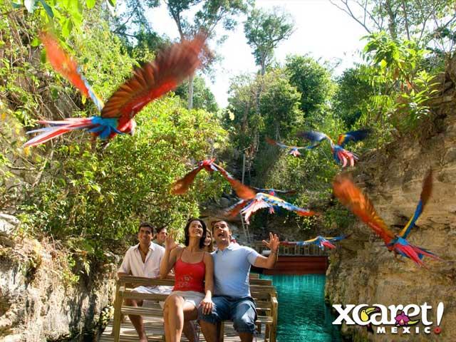 Puerto Morelos Villas Eco Parks Xcaret Xel Ha Xplor