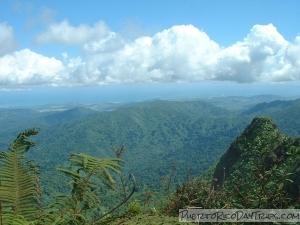 View from El Yunque