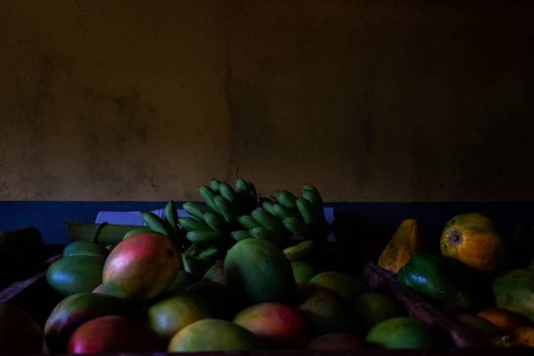 Reconstruir Puerto Rico a través del cultivo de alimentos