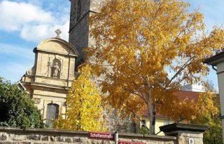 St. Nicolai im November