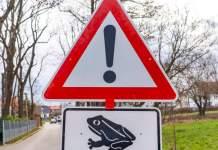 Ein dreieckiges Warnschild mit Ausrufezeichen und einem ergänzenden Schild mit einer Kröte