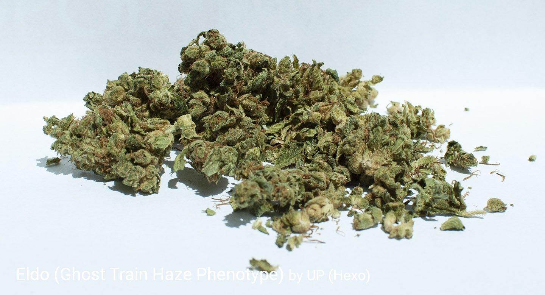 15.6% THC Eldo by UP