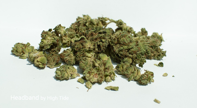 18.36% THC Headband by High Tide