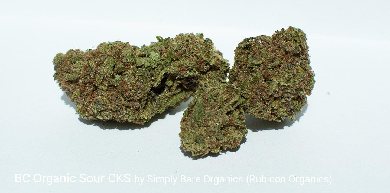21.99% THC BC Organics SOur CKS by Simply Bare Organics