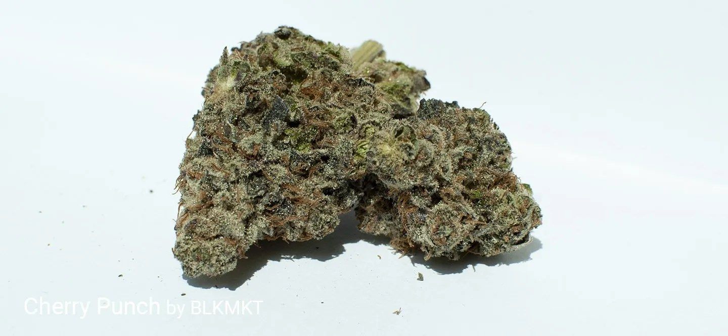 23.64% THC Cherry Punch by BLKMKT