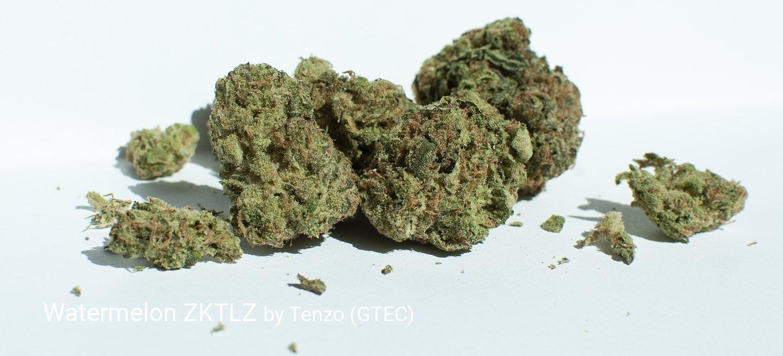 21.20% THC Watermelon ZKTLZ by Tenzo