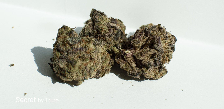 24.2% THC Secret by Truro
