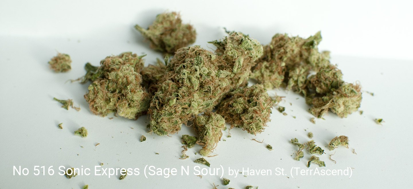 25.65% THC Sonic Express (Sour N Sage) by Haven St.