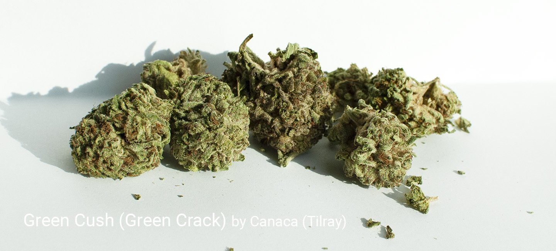 26.0% THC Green Cush aka Green Crack by Canaca