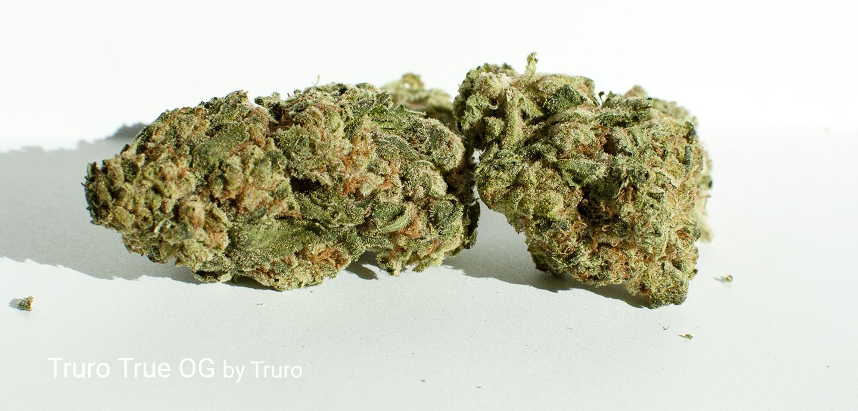 26.13% THC Truro True OG by Truro