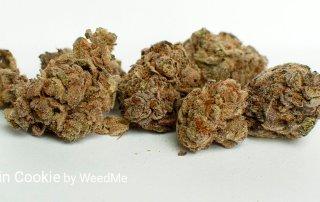 22.32% THC Mandarin Cookie by WeedMe