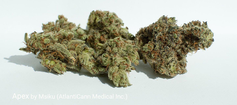 19.46% THC Apex by Msiku