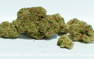 25.71% THC N0 427 Retrograde (Kush Cookies) by Haven St.