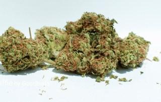 21.26% THC Mango Taffie by Good Buds Company Inc.