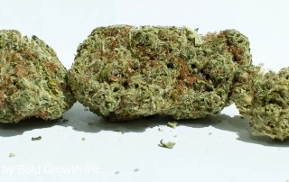 22.3% THC B. Banner by Bold growth Inc.