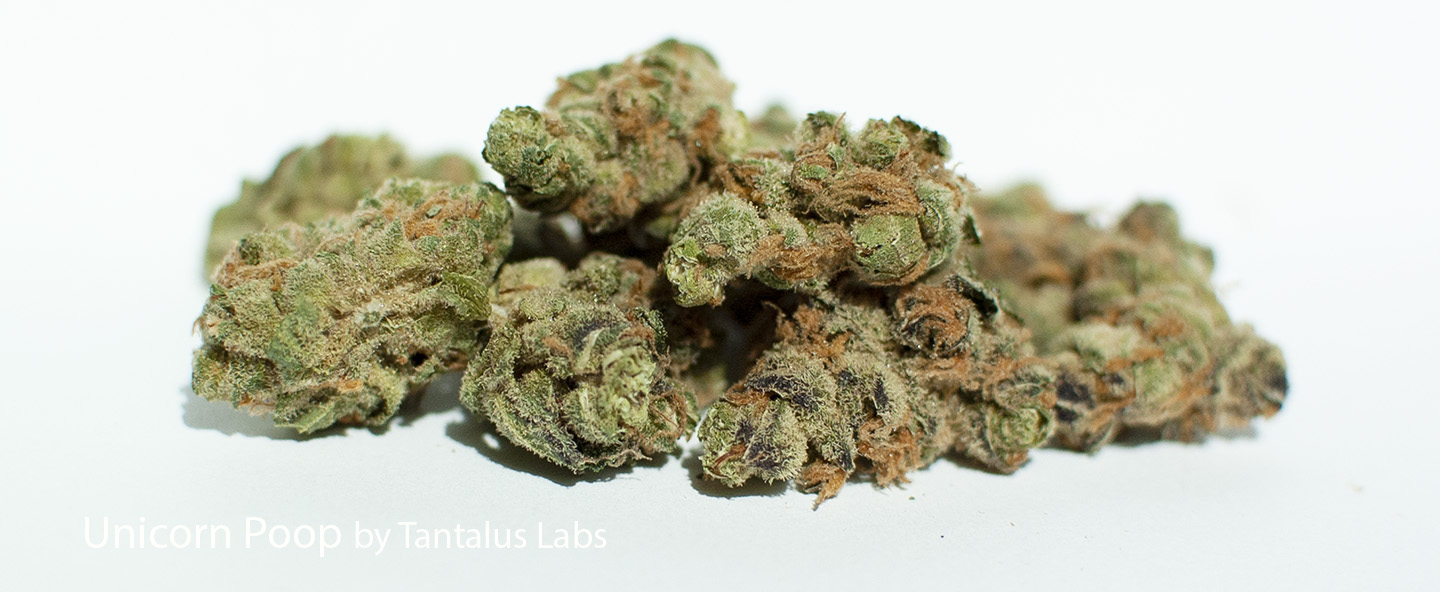 22.64% THC Unicorn Poop by Tantalus Labs