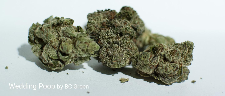 25.9% THC 2.0% Total Terpenes Wedding Poop by BC Green