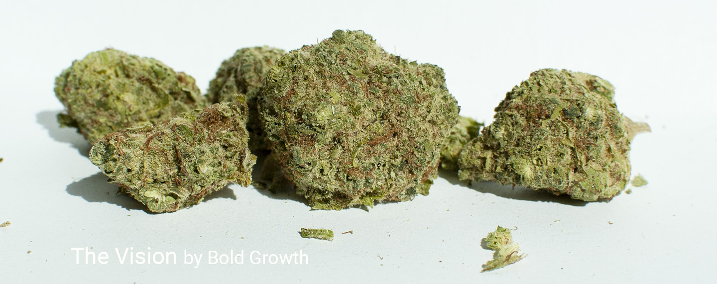 20.9% THC The Vision by Bold