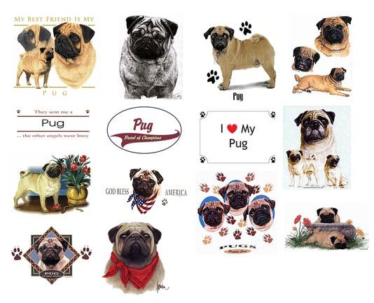 Pugs: Pug apparel, clothing; t