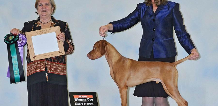 Winners Dog AOM
