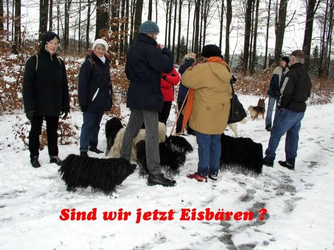 Puli Winterwanderung in Belg Eisbären