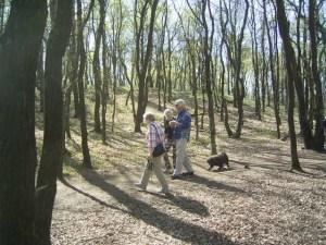 Puli Frühlingswanderung in Oer-Erckenschwick Bild 4
