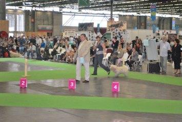 Weltausstellung in Paris 11