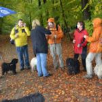 Herbstwanderung 2013 Wald