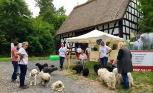 Tag der Tiere 2018 @  Rheinland-Pfälzisches Freilichtmuseum Bad Sorbernheim | Bad Sobernheim | Rheinland-Pfalz | Deutschland
