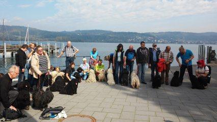 Klubausstellung Bodensee Spaziergang