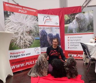 World dog show Leipzig 2018 Alle da