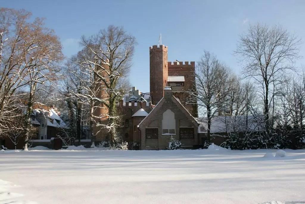 Burg Schwaneck vor verschneitem Feld