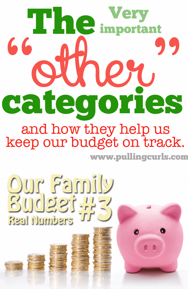 """*Includes our ACTUAL budget #'s* To make larger purchases during the month I have other """"pots"""" I can take money from. Maybe that kind of budgeting idea can help you too!"""