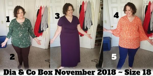 Review of Dia & Co November 2018 Box