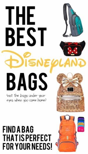 how to pick the best disneyland bag