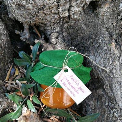 Composta albicocca bio - Reati di Gola - pulmino contadino