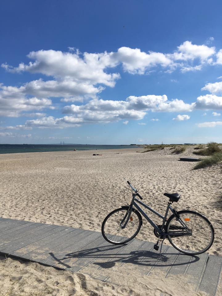 The beautiful Amager Beach (source - Pulped Travel)