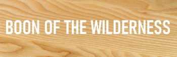 READ - BOON OF THE WILDERNESS