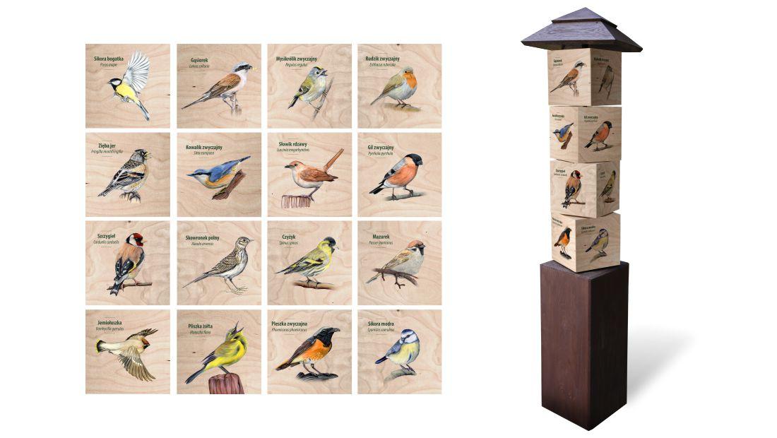 KW-8 - Gra edukacyjna kostki wiedzy - Ptaki spiewajace