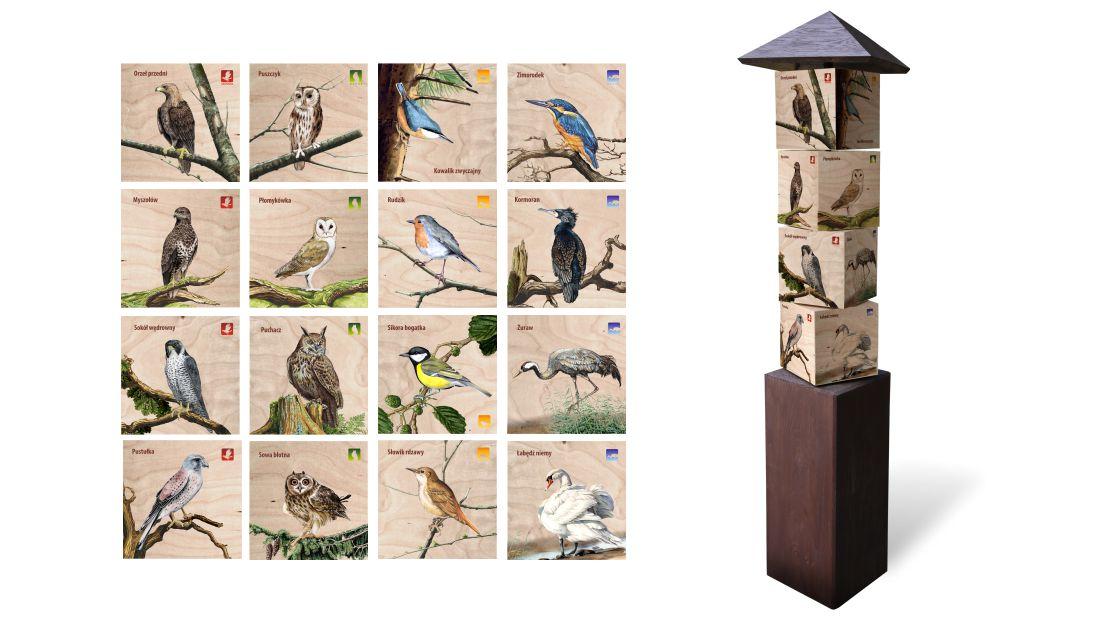 KWm-3 - Gra edukacyjna kostki wiedzy - ptaki