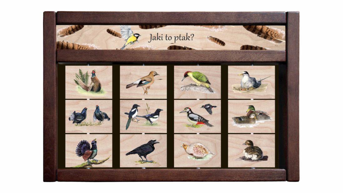 ZIDM-17 - Tablica interaktywna - Jaki to ptak