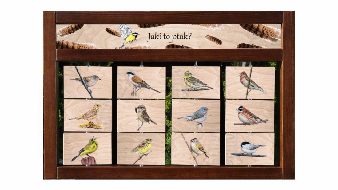 ZIDM-28 - Tablica interaktywna - Jaki to ptak
