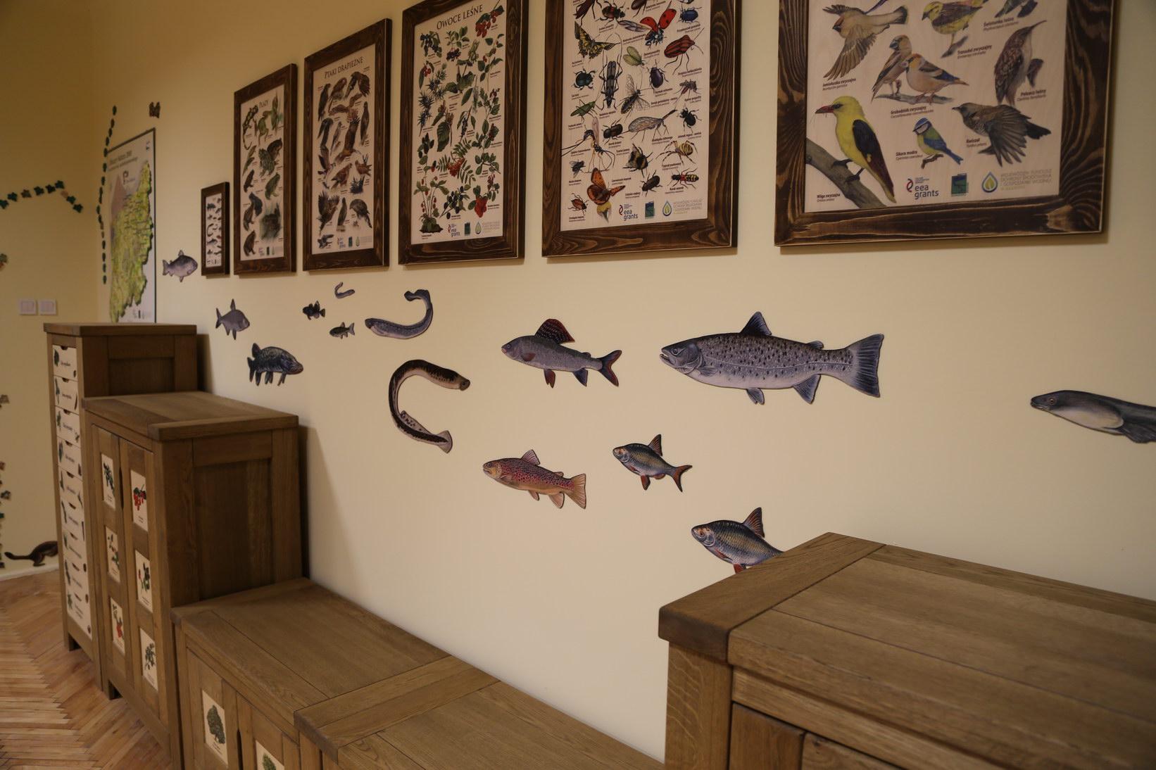 Dekoracje ścienne - Ryby