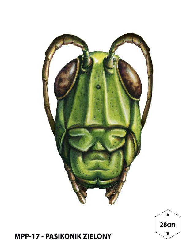 MPP-17 - Pasikonik zielony