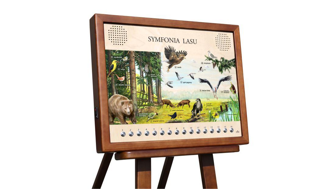Tablica dźwiękowa - Symfonia lasu