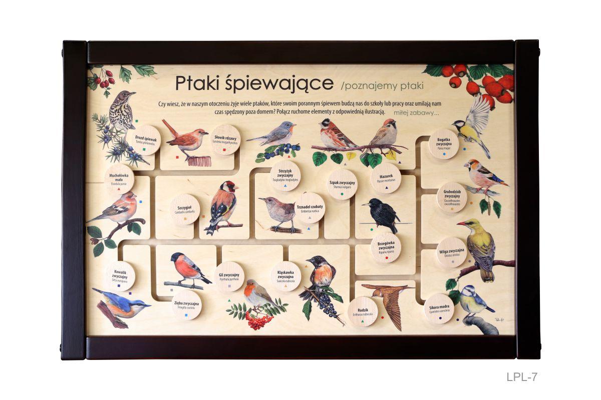 LPL-7 - Ptaki spiewające (Łamigłówka przyrodnicza do wnętrz)