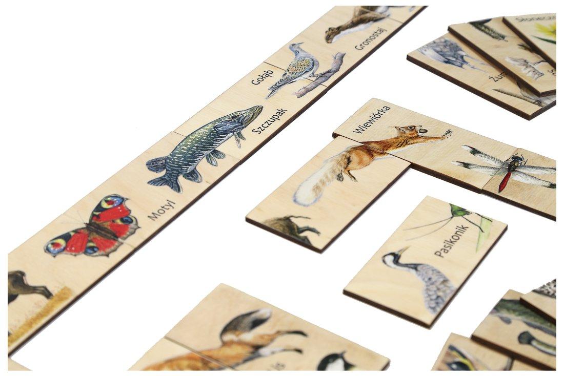 DOM-2 - Drewniane domino przyrodnicze