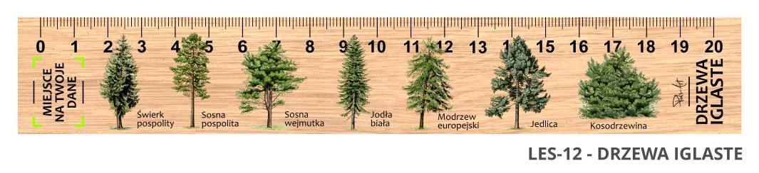 LES-12 - drzewa iglaste (linijka drewniana)