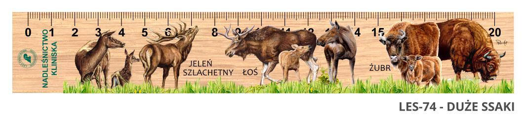 LES-74 - Duze ssaki (linijka drewniana)