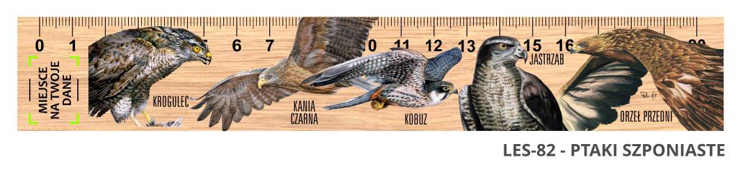 LES-82 - Ptaki drapiezne 3 (linijka drewniana)